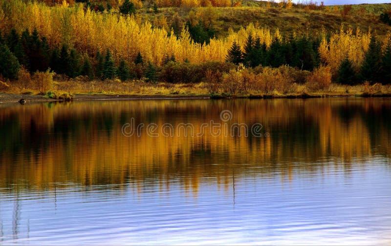 Iceland jesieni jezioro odbija kolory obrazy stock