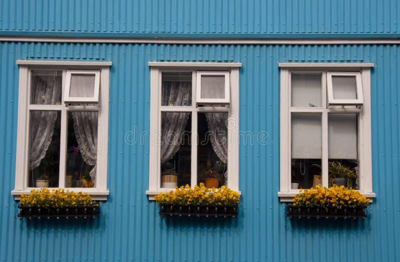 iceland nordiska reykjavik typiska fönster royaltyfri foto