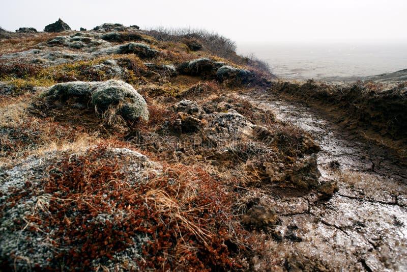 Iceland volcanic landscape stock image