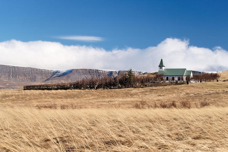 Iceland wheat field stock images