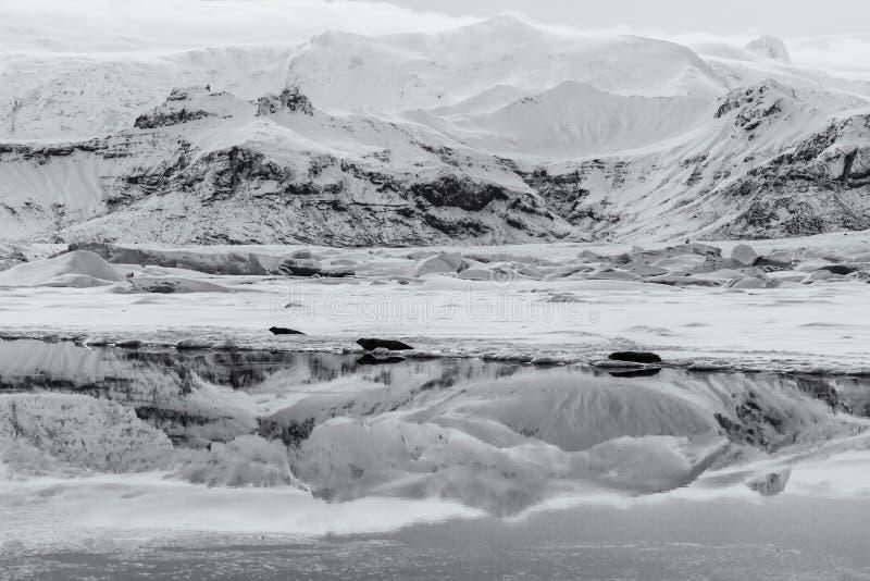 Iceland zimy kraina cudów obraz stock