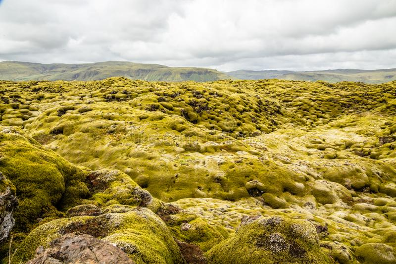 Icelandic fields of lava covered with moss panorama, South Iceland stock photos