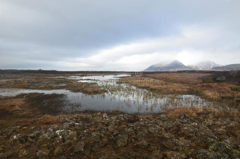 Icelandic landscape with a scenic field and mountains stock image