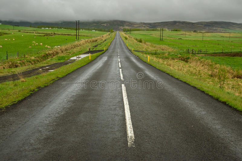 Download Icelandic road stock photo. Image of outdoor, sheep, drive - 33396818