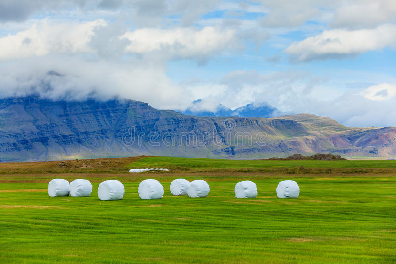 Download Icelandic Rural Landscape. stock image. Image of idyllic - 36580569
