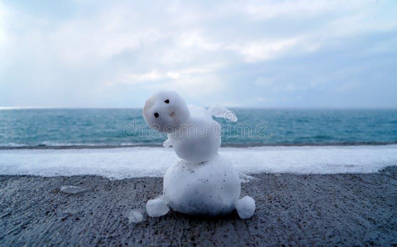 iceman imagem de stock