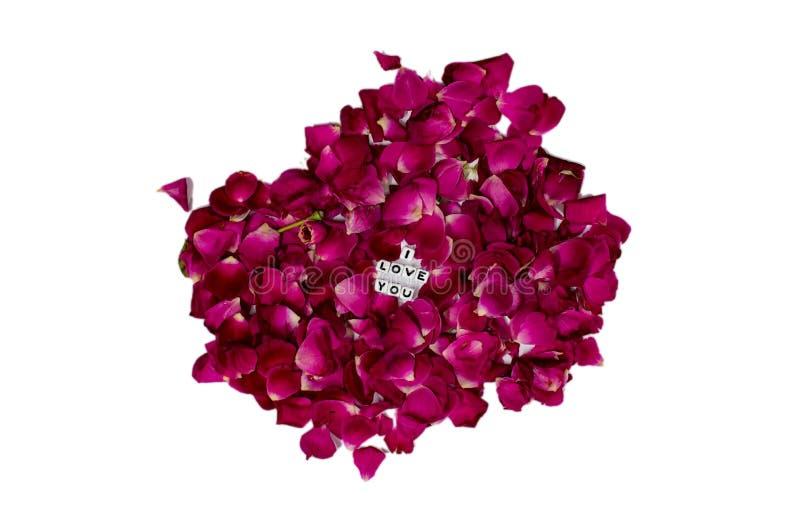 Ich liebe dich Textnachricht im mittleren von rosafarbenen Blumenblättern stockbilder