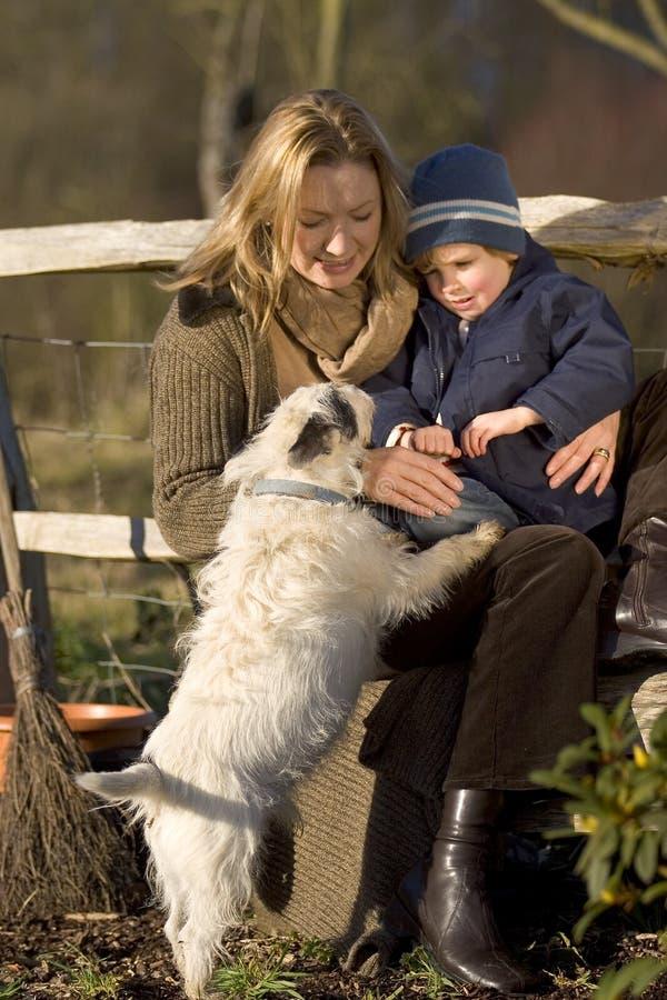 Ich, Sie und der Hund stockfotografie