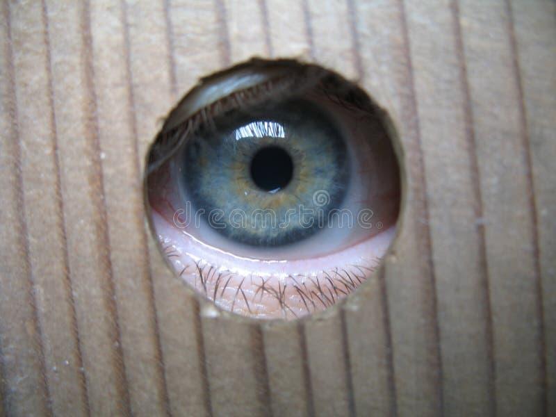 Ich spioniere aus lizenzfreie stockfotografie