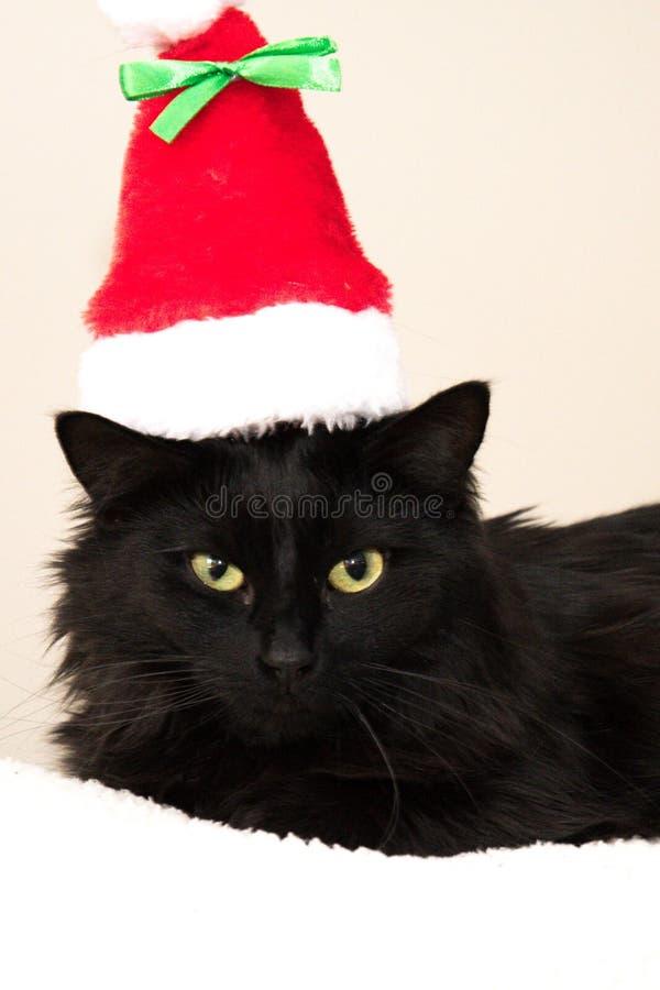 Ich verfehlte Weihnachten, jetzt ich kann, es glaubt stockbilder