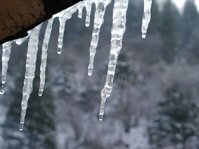 Download Icicle stock image. Image of roof, sight, eaves, forest, winter - 4601