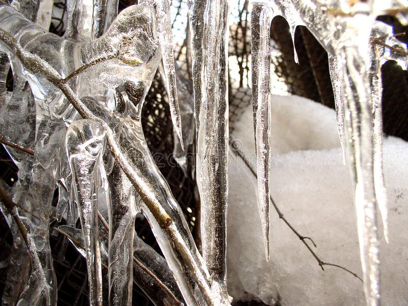 Icicle 1 royalty free stock photo