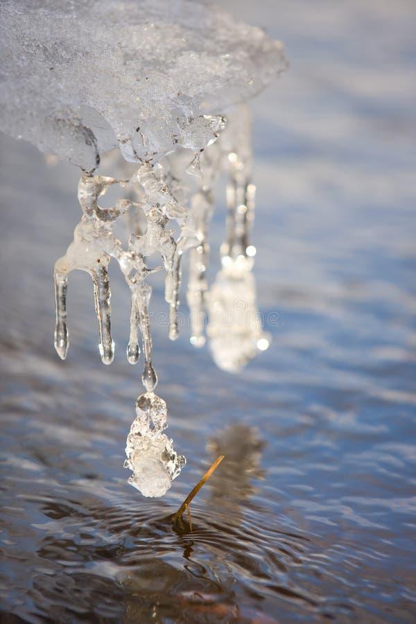 icicle стоковые фото