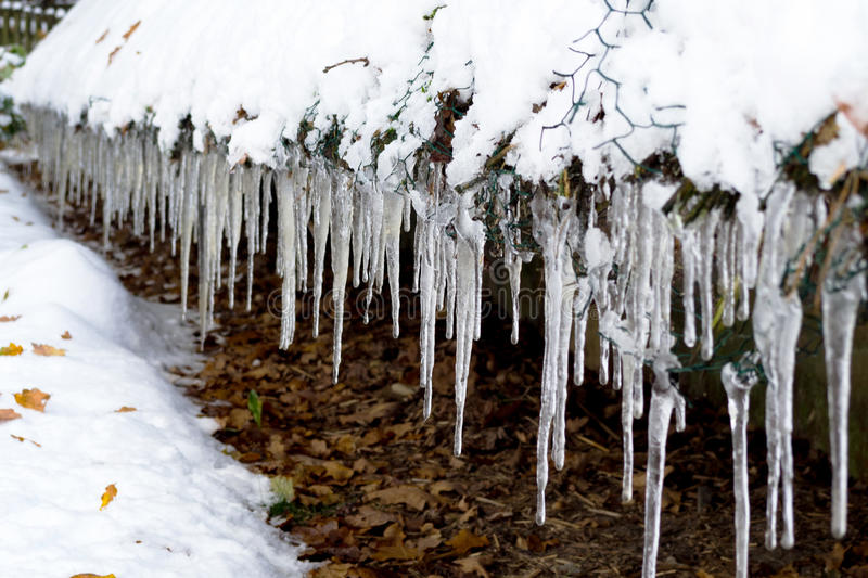 icicle imagens de stock royalty free