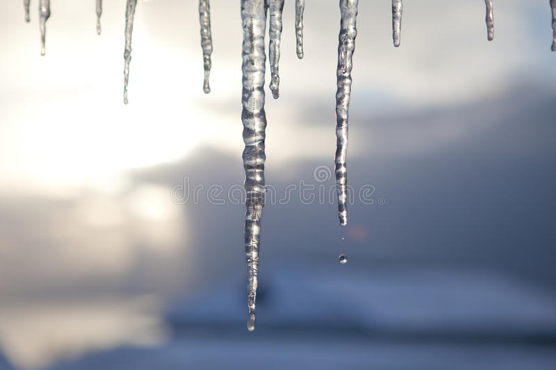 Download Icicles Royalty Free Stock Photo - Image: 17667205