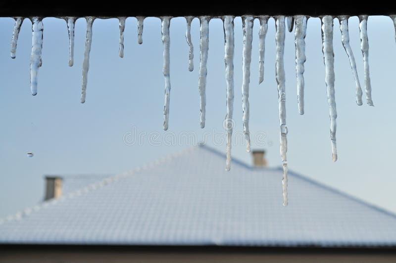 Download Icicles stock image. Image of freezer, december, freeze - 22824683