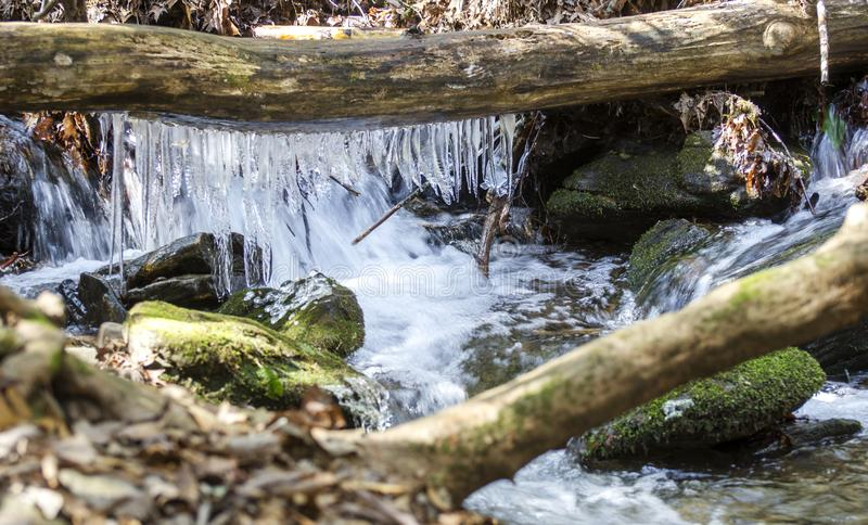 Icicles in cold North Georgia Mountain Stream royalty free stock photography