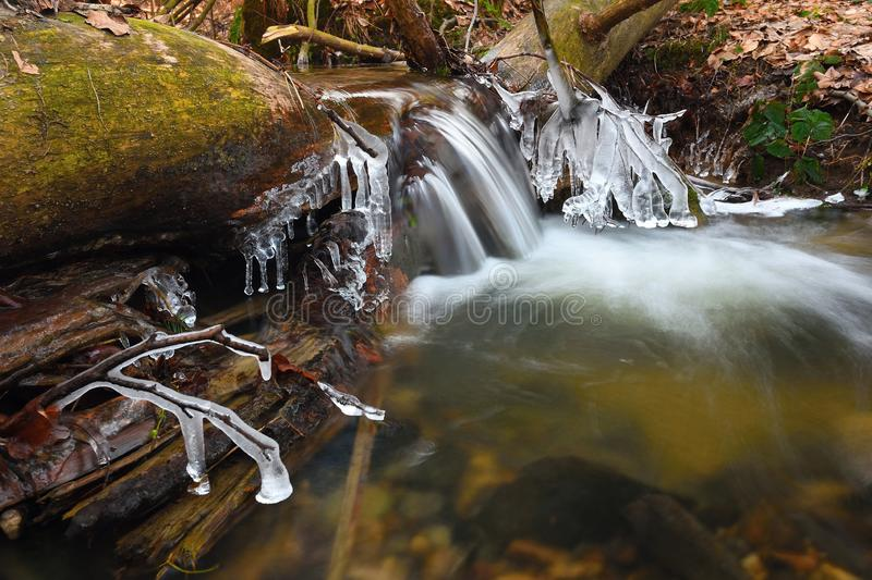 Icicles hang on twigs and icy bark above chilli rapid stream stock image