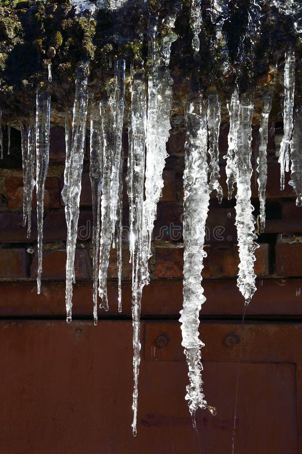 Icicles hanging on roof dripping close up stock photography