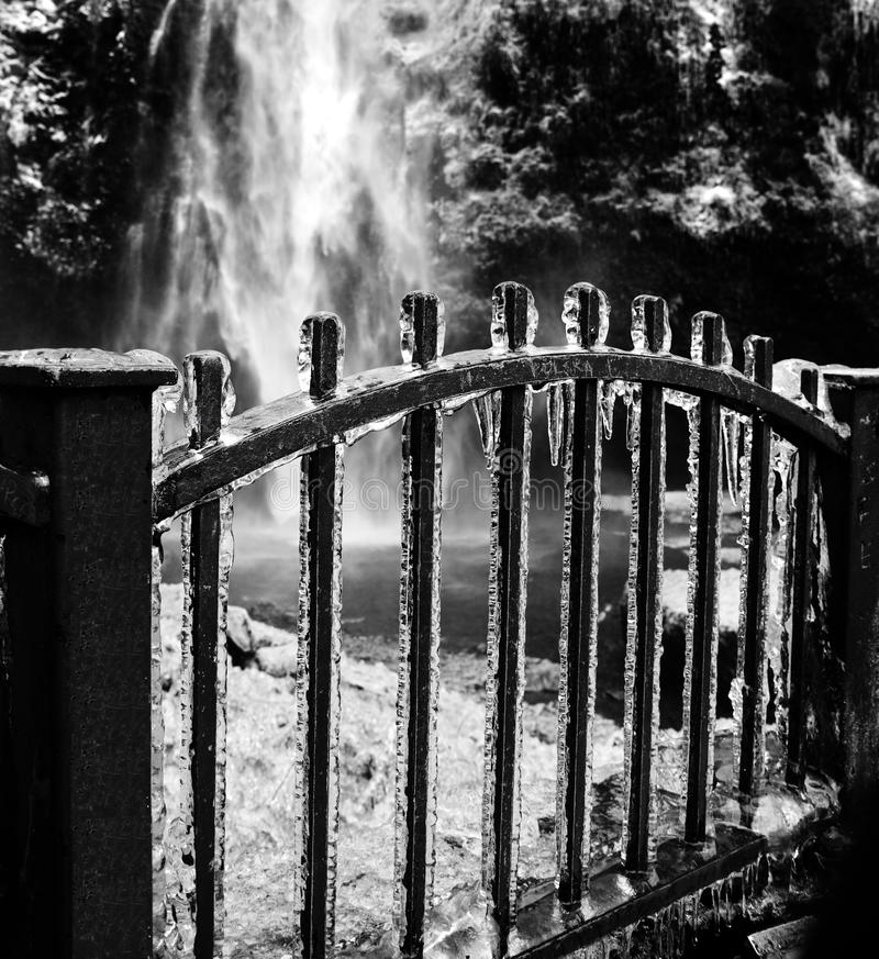 Download Icicles on iron fence stock image. Image of fence, cold - 15805125