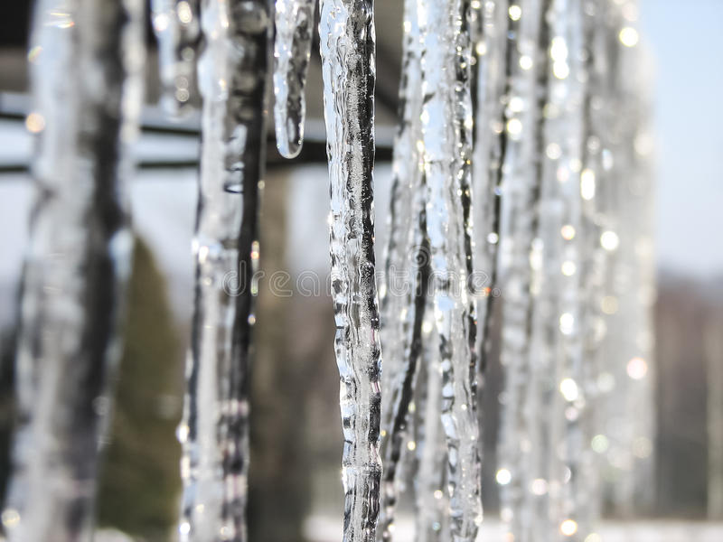 Icicles. Lit by soft light of the rising sun royalty free stock images