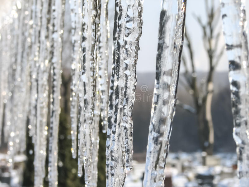 Icicles. Lit by soft light of the rising sun stock photos