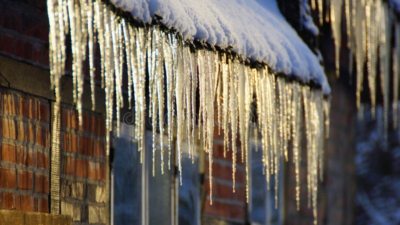 Icicles and snow royalty free stock image