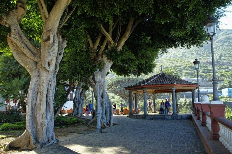 Icod de los Vinos, Tenerife imagen de archivo