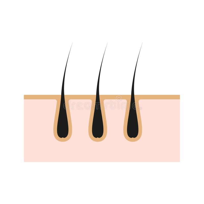 Icon illustration of skin hair. Vector element on isolated background for cosmetic depilation, medicine projects. Eps vector illustration