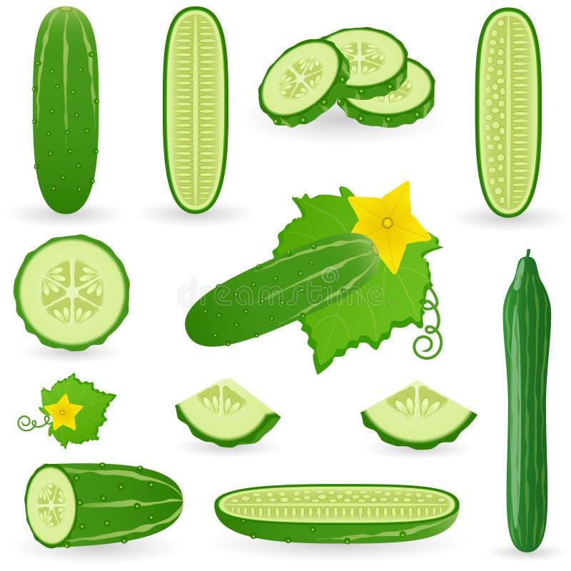 Icon Set Cucumber vector illustration