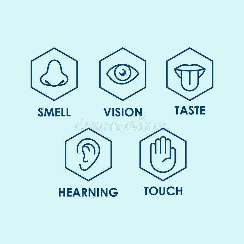 Icon set of the five human senses: vision eye smell nose hearing ear touch hand taste mouth with tongue. stock illustration