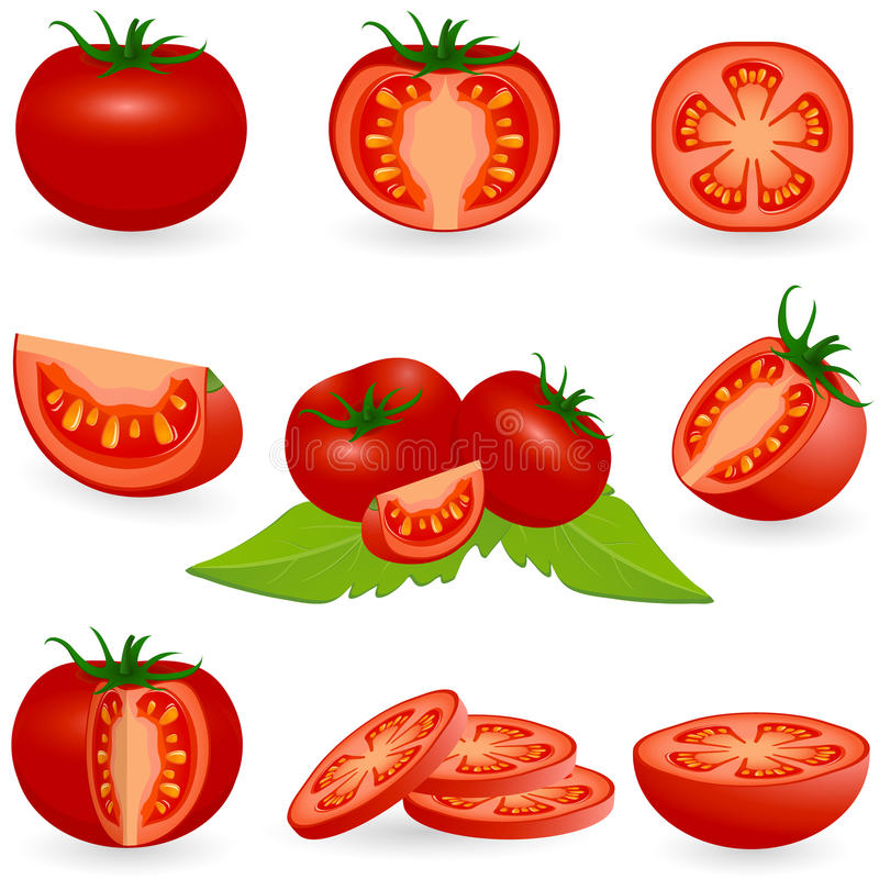 Icon Set Tomato royalty free illustration