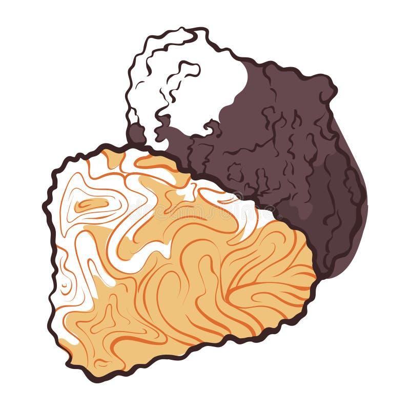 Icona del fungo del tartufo, fungo naturale fresco di gourmet illustrazione vettoriale