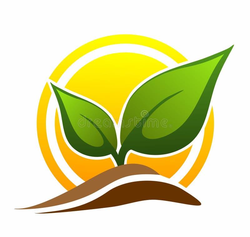 Download Icona del germoglio illustrazione di stock. Illustrazione di icona - 117978575