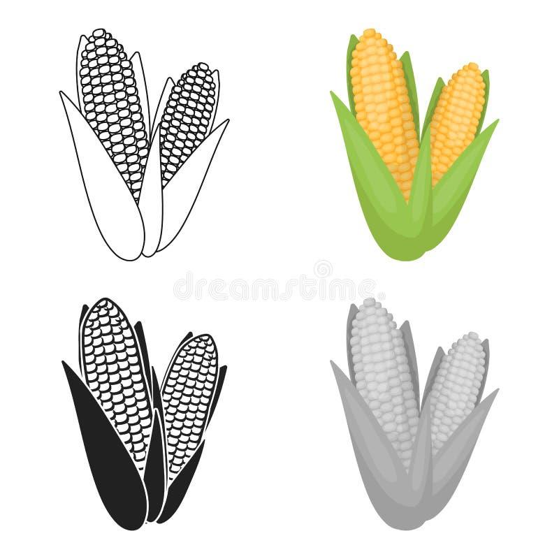 Icona del mais nello stile del fumetto isolata su fondo bianco Vettore canadese delle azione di simbolo di giorno di ringraziamen illustrazione vettoriale