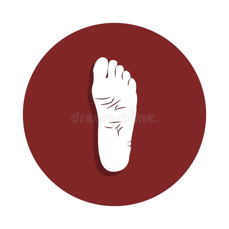 icona del piede umano nello stile del distintivo Uno dell'icona della raccolta dell'organo può essere usato per UI, UX illustrazione vettoriale
