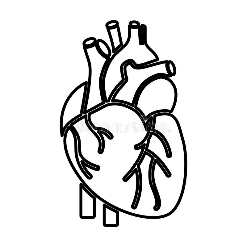 Icona dell'essere umano dell'organo del cuore illustrazione vettoriale