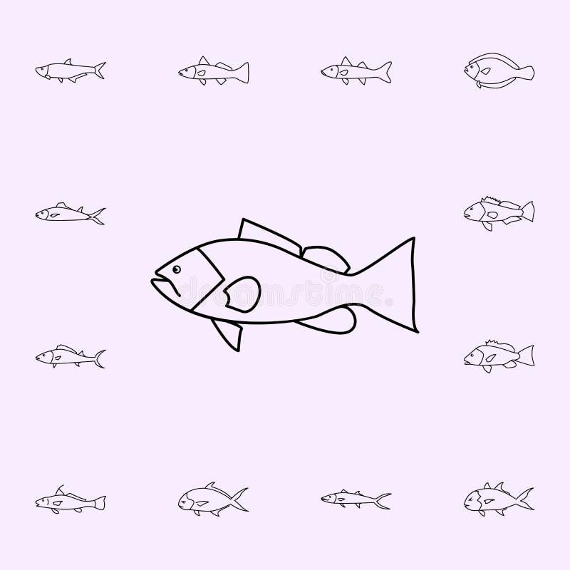 icona della cernia del bavaglio Insieme universale delle icone del pesce per il web ed il cellulare illustrazione vettoriale