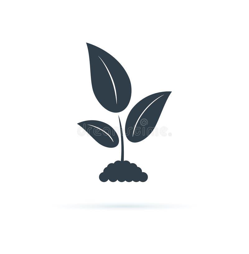 Icona della pianta Illustrazione dell'icona di vettore Simbolo di agricoltura, segno di coltivazione di biologia, pianta di giard illustrazione vettoriale