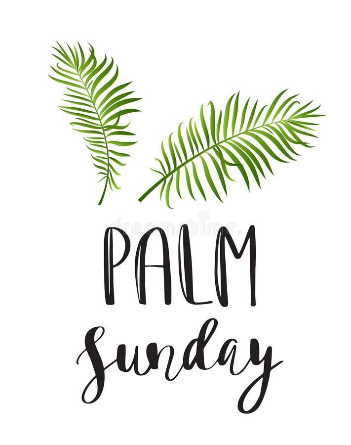 Icona delle foglii di palma Illustrazione di vettore per la Domenica delle Palme cristiana di festa illustrazione di stock