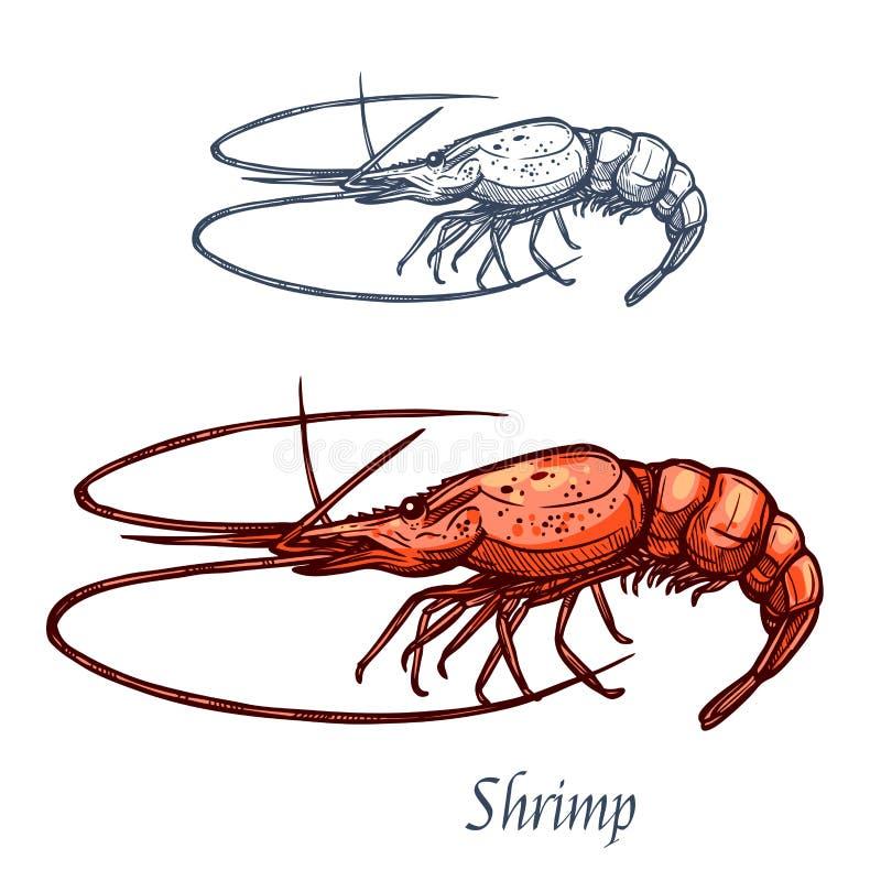 Icona di schizzo isolata vettore dei frutti di mare del gamberetto del gamberetto illustrazione vettoriale