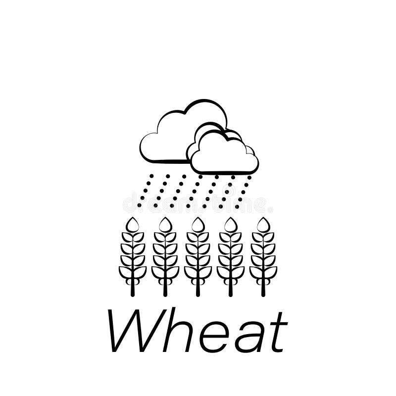Icona di tiraggio della mano del grano Elemento di agricoltura delle icone dell'illustrazione I segni ed i simboli possono essere illustrazione di stock