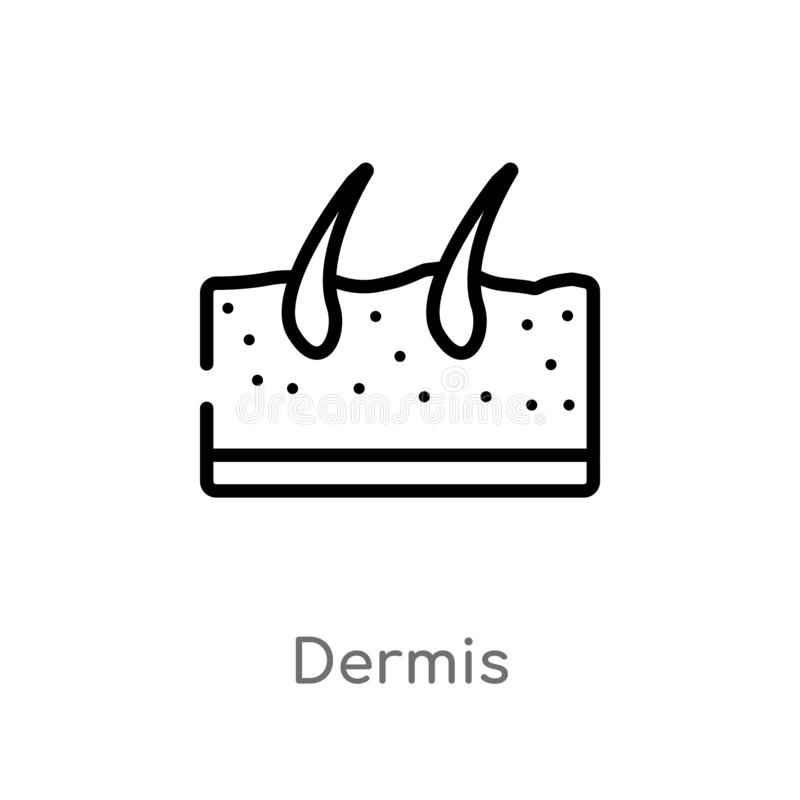 icona di vettore del derma del profilo linea semplice nera isolata illustrazione dell'elemento dal concetto medico derma editabil illustrazione vettoriale