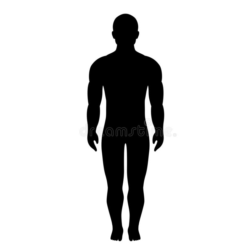 Icona di vettore della siluetta del corpo umano illustrazione di stock