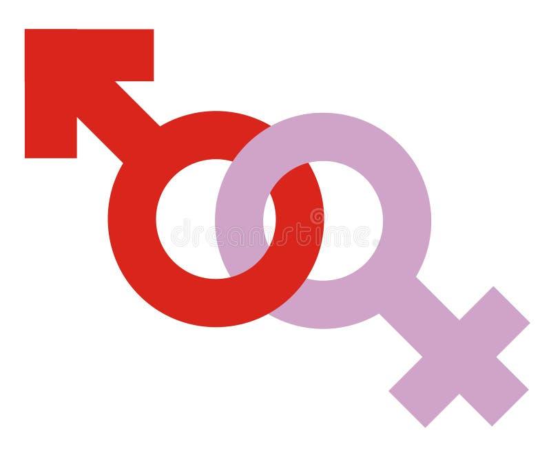 Icona eterosessuale illustrazione di stock