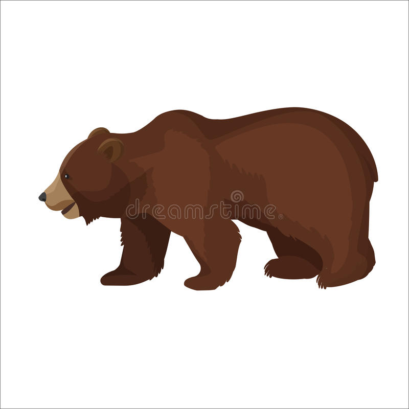 Icona grafica del grande dell'orso bruno primo piano di vista laterale su bianco illustrazione vettoriale