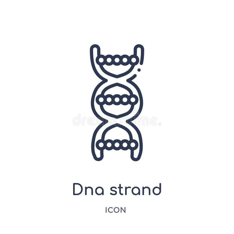 Icona lineare del filo del DNA dalla raccolta del profilo di istruzione Linea sottile vettore del filo del DNA isolato su fondo b royalty illustrazione gratis