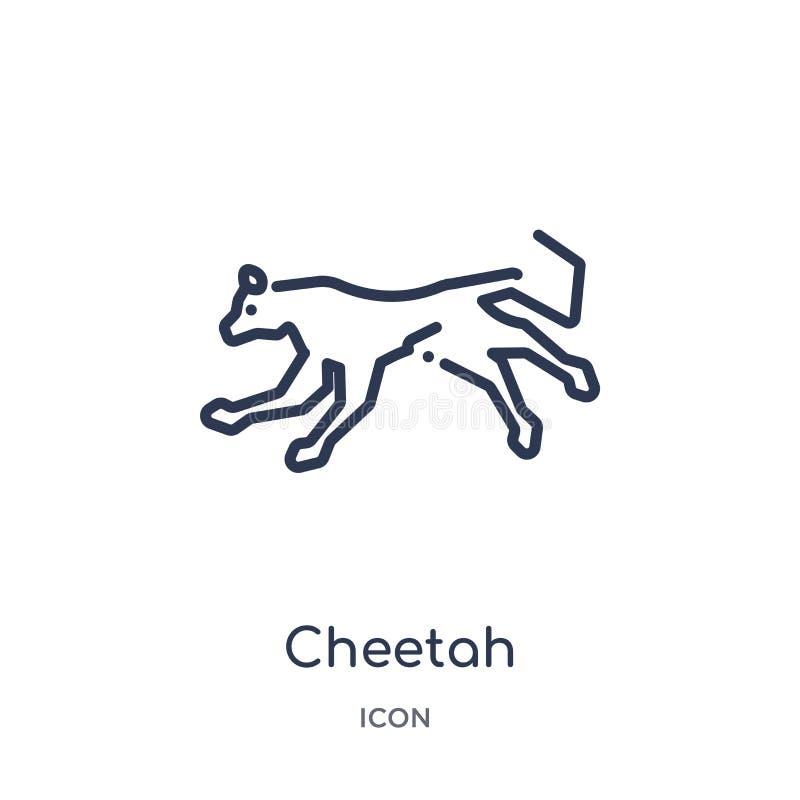 Icona lineare del ghepardo dalla raccolta del profilo degli animali Linea sottile icona del ghepardo isolata su fondo bianco ghep royalty illustrazione gratis