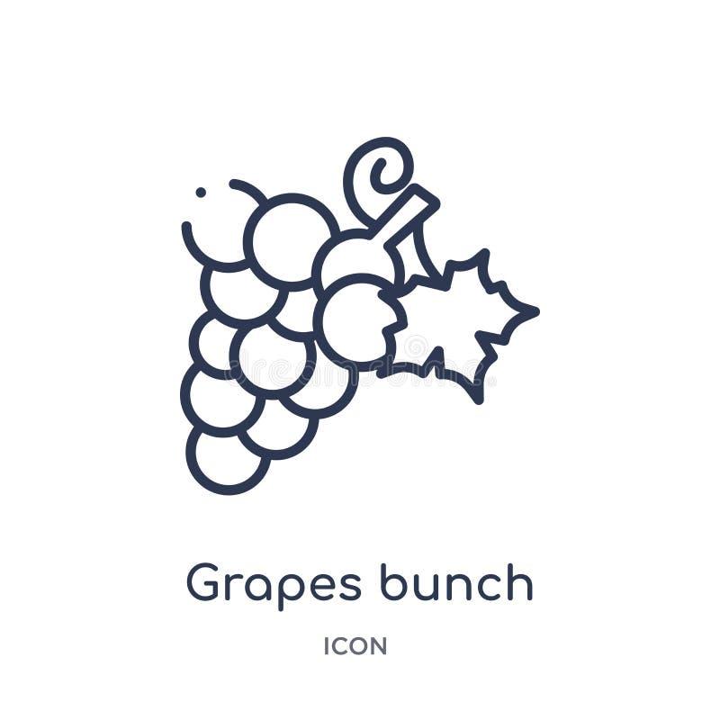Icona lineare del mazzo dell'uva dalla raccolta del profilo della Grecia Linea sottile icona del mazzo dell'uva isolata su fondo  illustrazione di stock