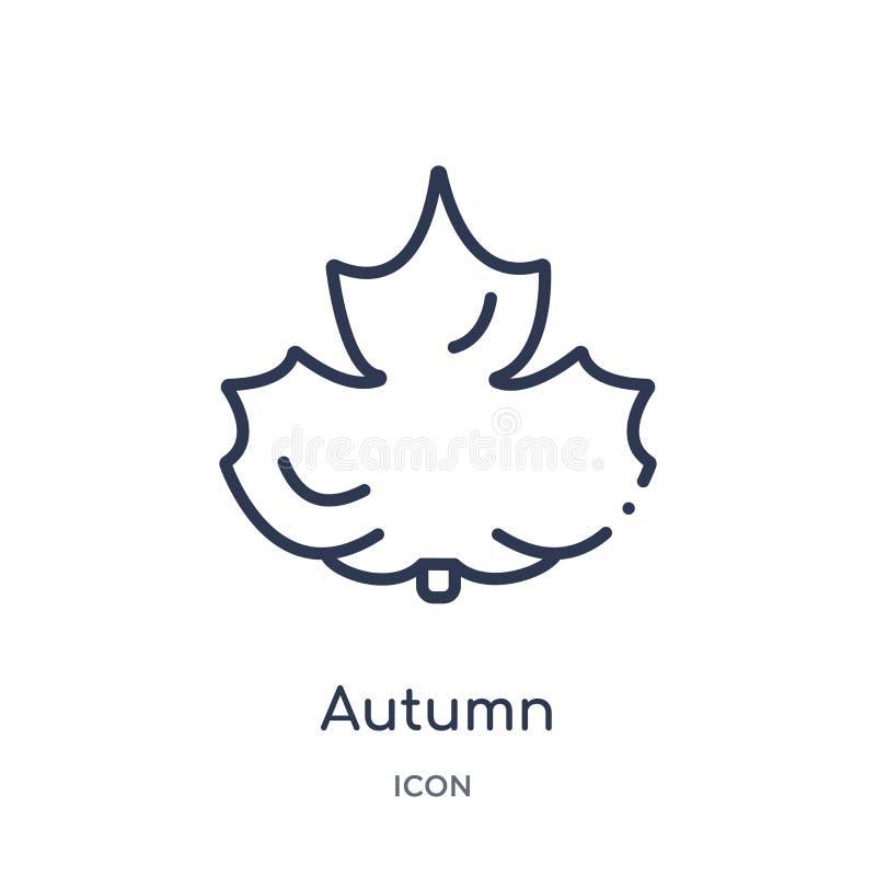 Icona lineare di autunno dalla raccolta del profilo di istruzione Linea sottile vettore di autunno isolato su fondo bianco autunn illustrazione vettoriale